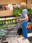 Shopper (with cane in shopping cart)