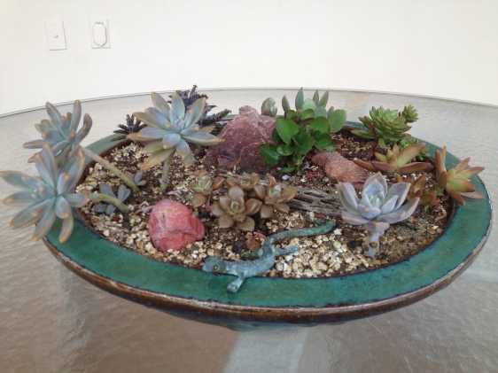Dish Garden with Succulents