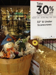 Trader Joe's Scarecrows
