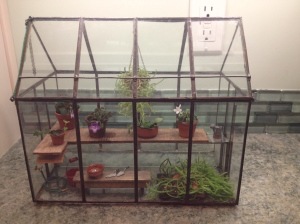 Greenhouse terrarium with hinged roof (click to enlarge)